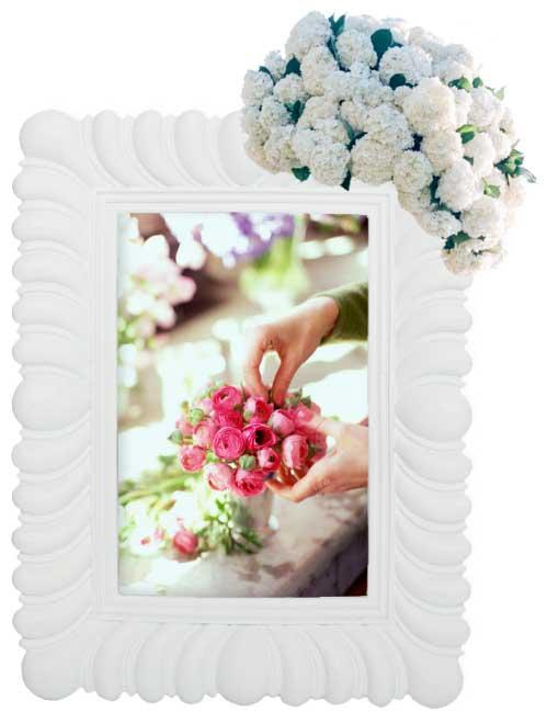 Bienvenidos A Flores Del Prado